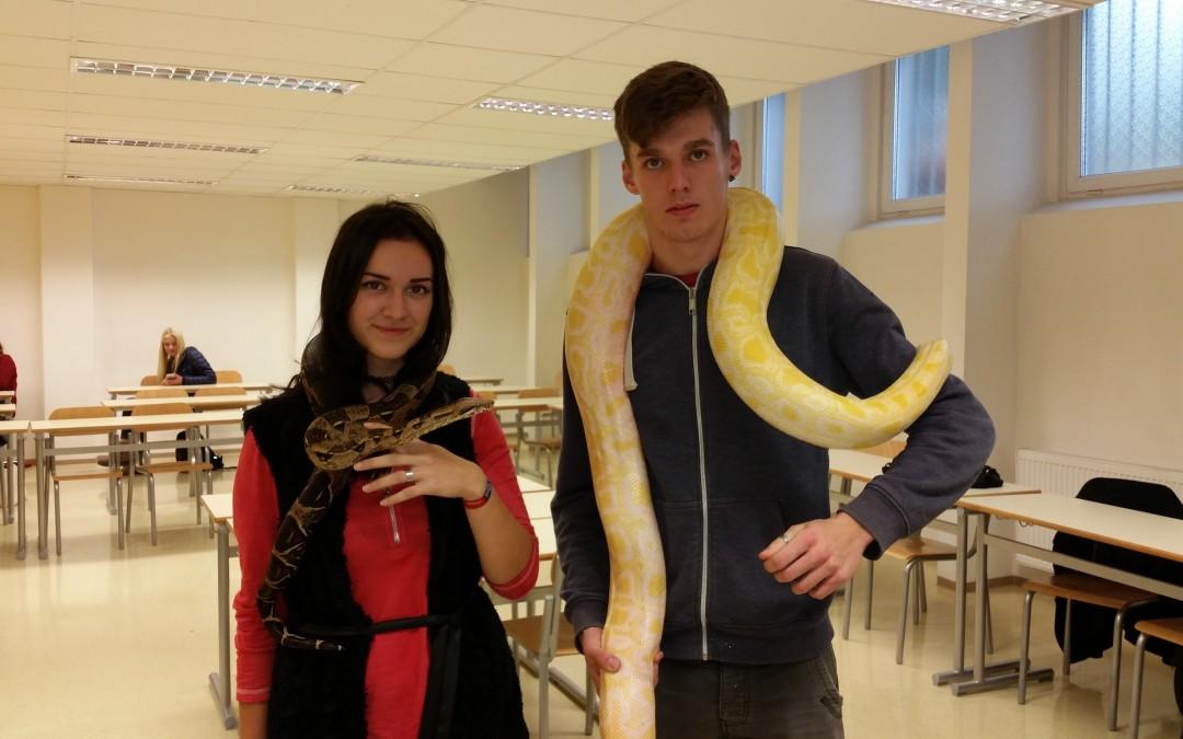 Živali na obisku